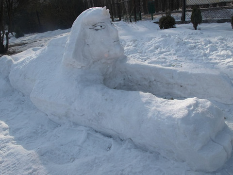 Konkurs zimowy